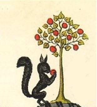 Abildtræ og Glødenøtt